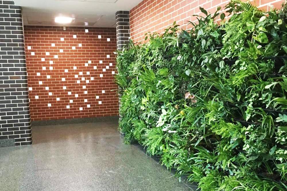 Dempsey Green Wall Crop.jpg