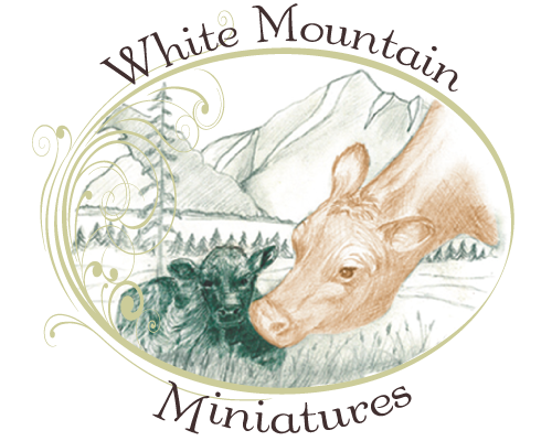 White Mountain Miniatures