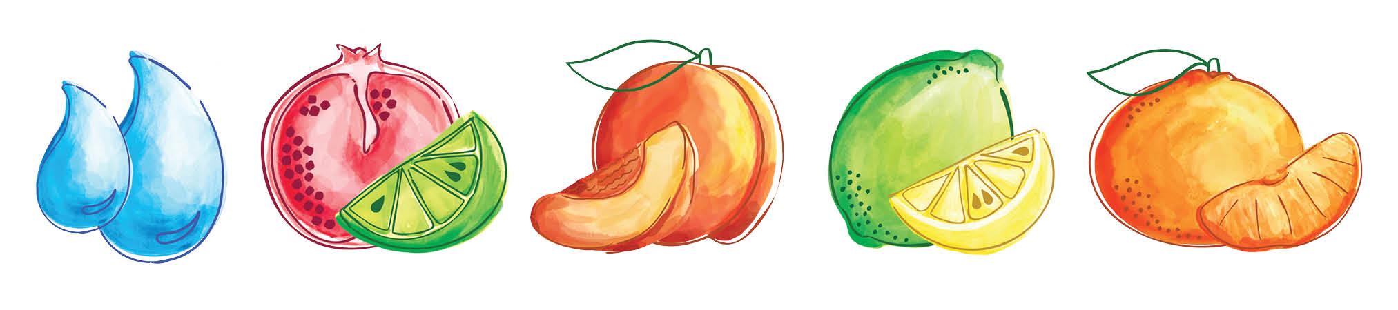 J00003_TRSW_Website_Assets_Fruit_Strip.jpg