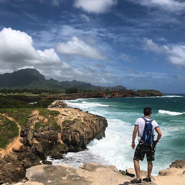 Scouting for sea turtles in Kauai.