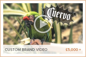 Recommended_Video_Production_for_Brands.jpg
