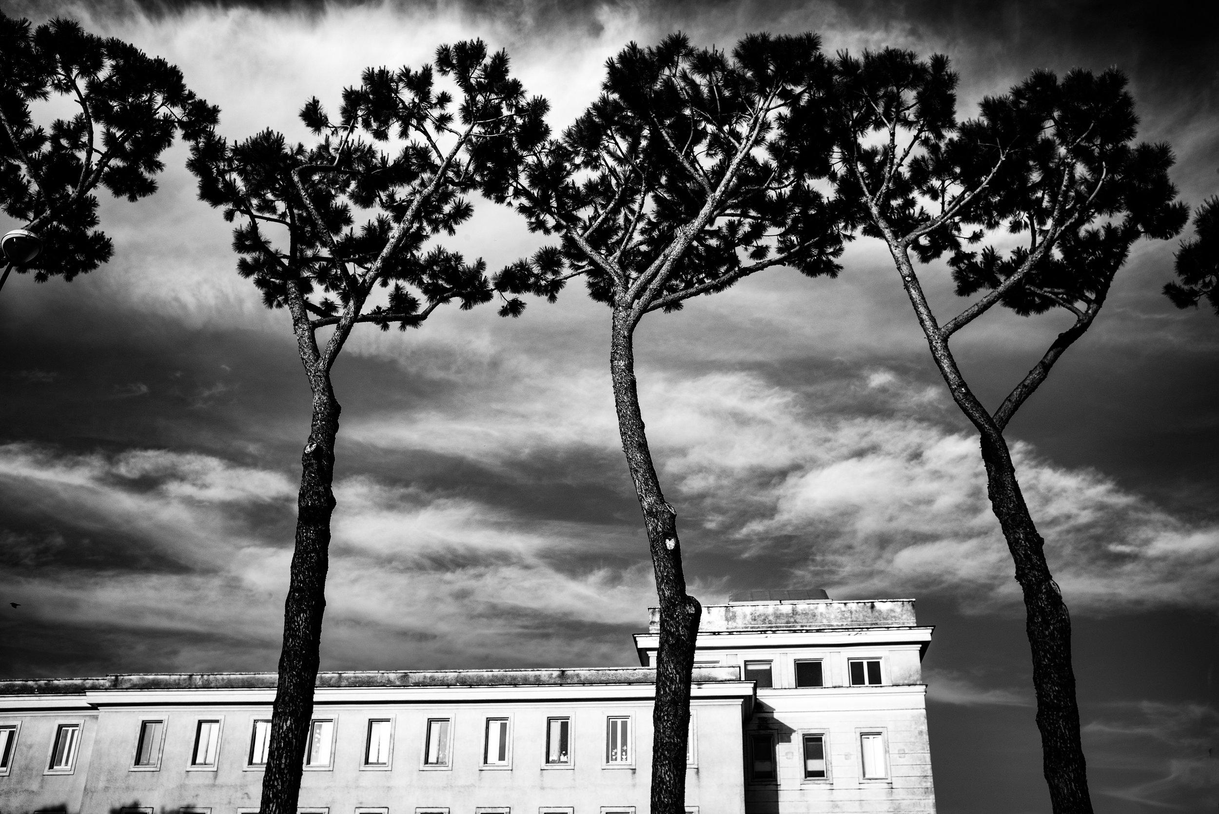 Pompei by Nadja Gusenbauer