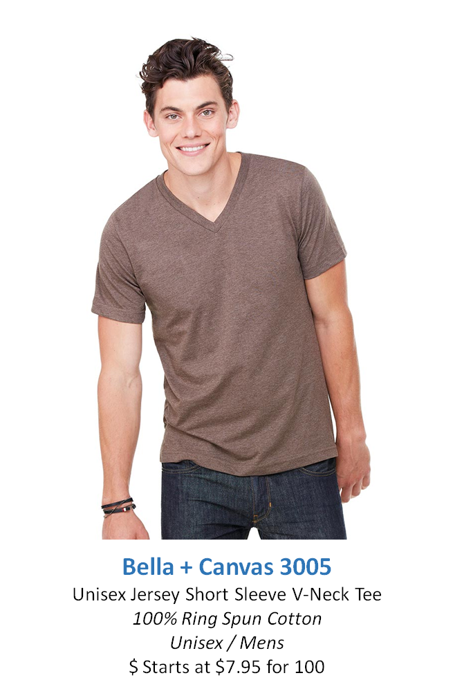 Bella + Canvas 3005.png