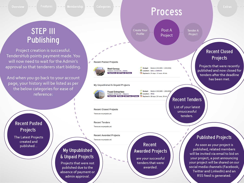 8 TendersHub brochure_Process 2C.jpg