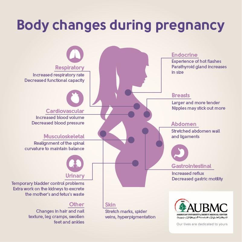 Body pregnancy copy.jpg