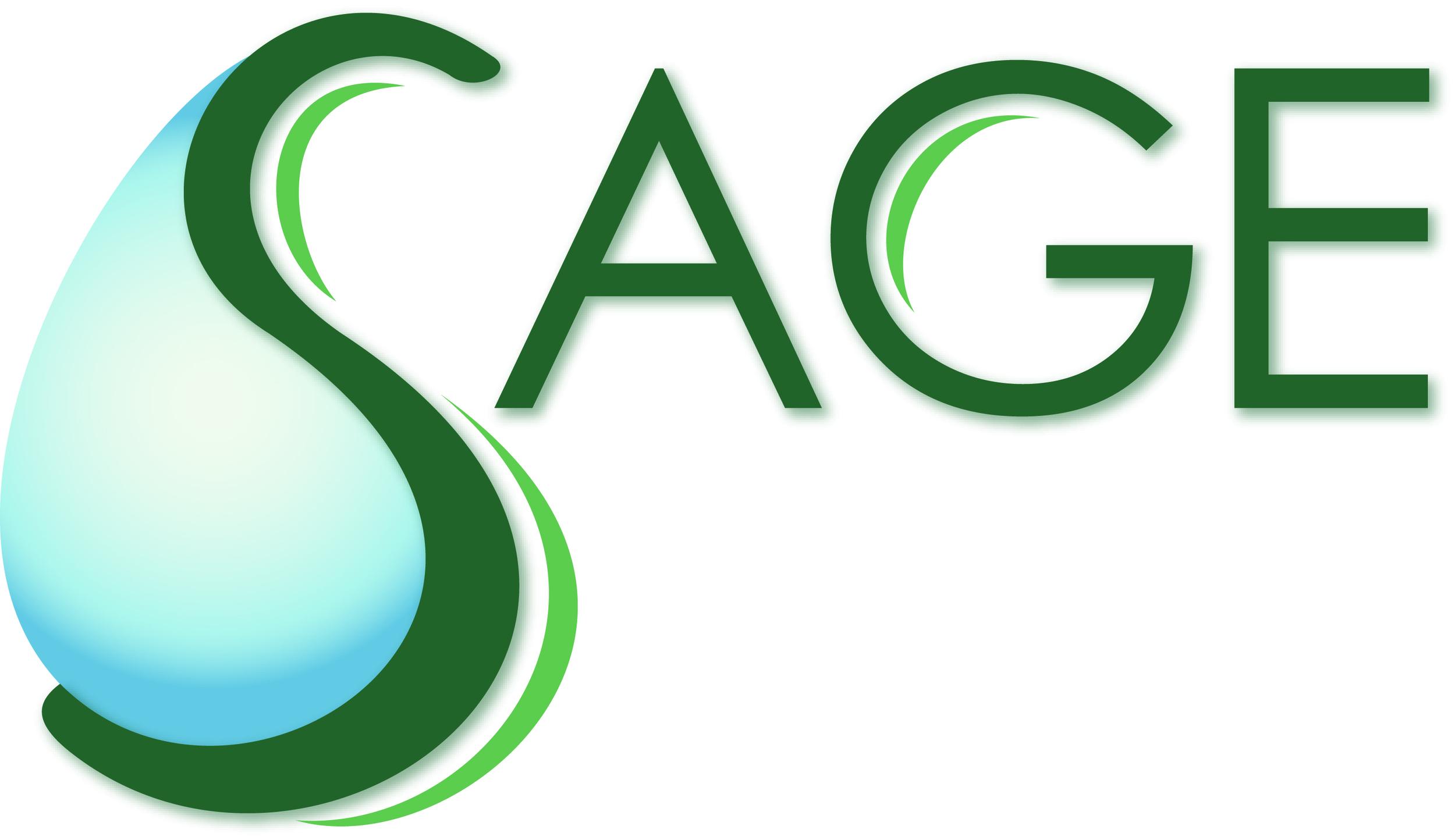 SAGE Logo_Wht Background & Shadow.jpg