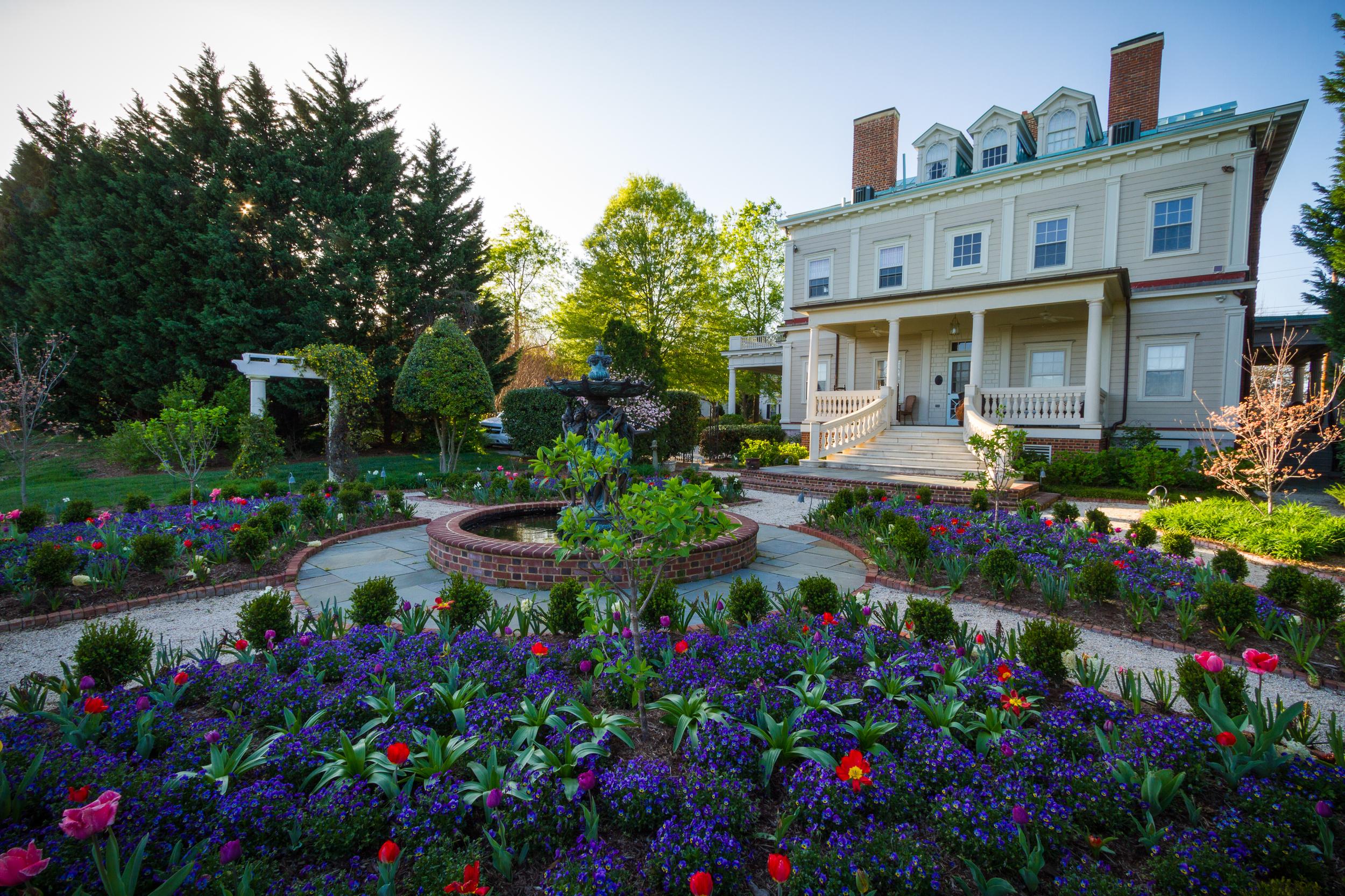 Formal residential garden