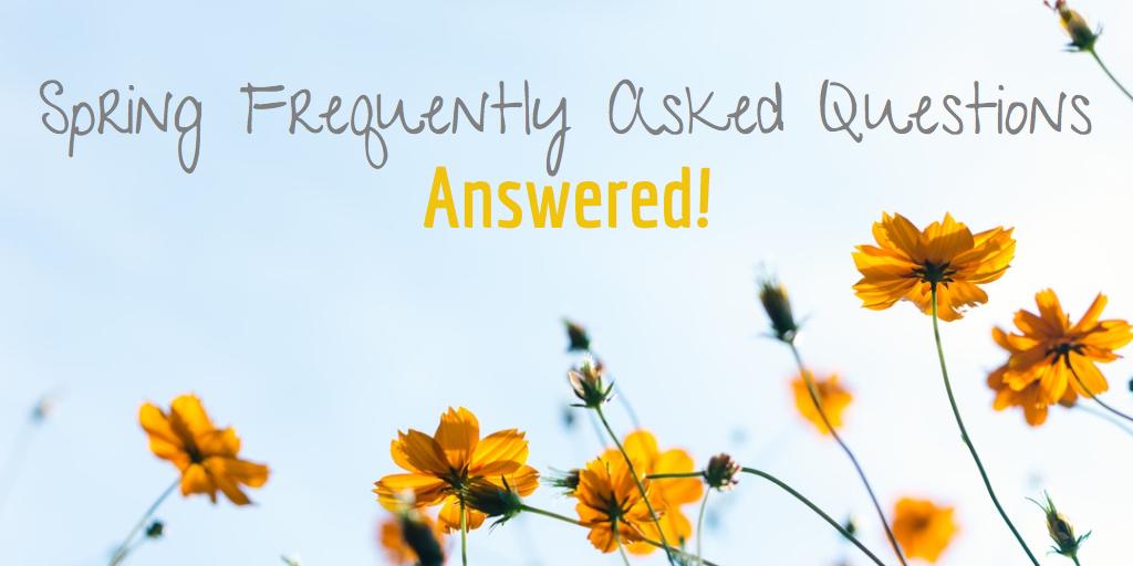 Spring FAQ