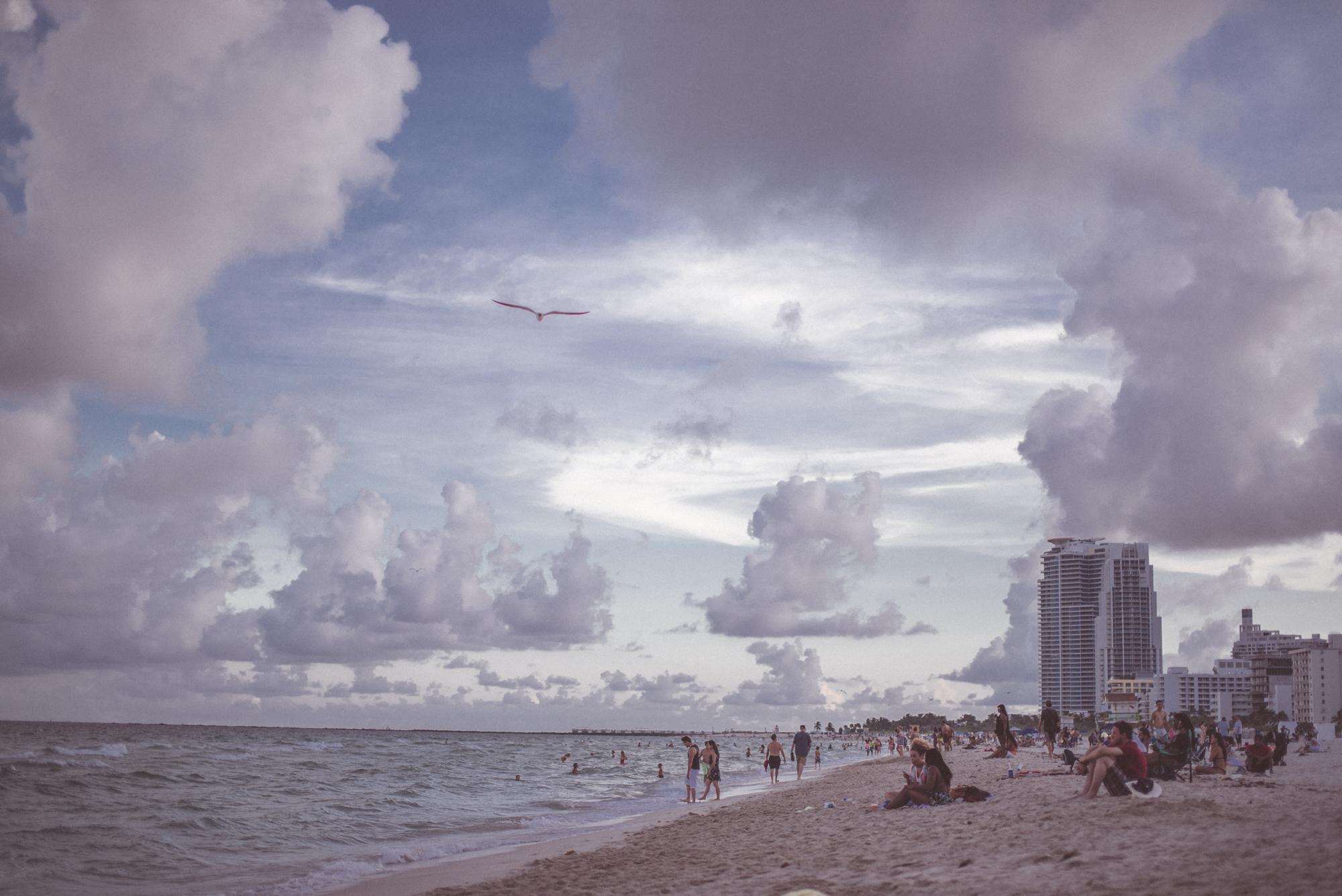 Miami-DR-19.jpg