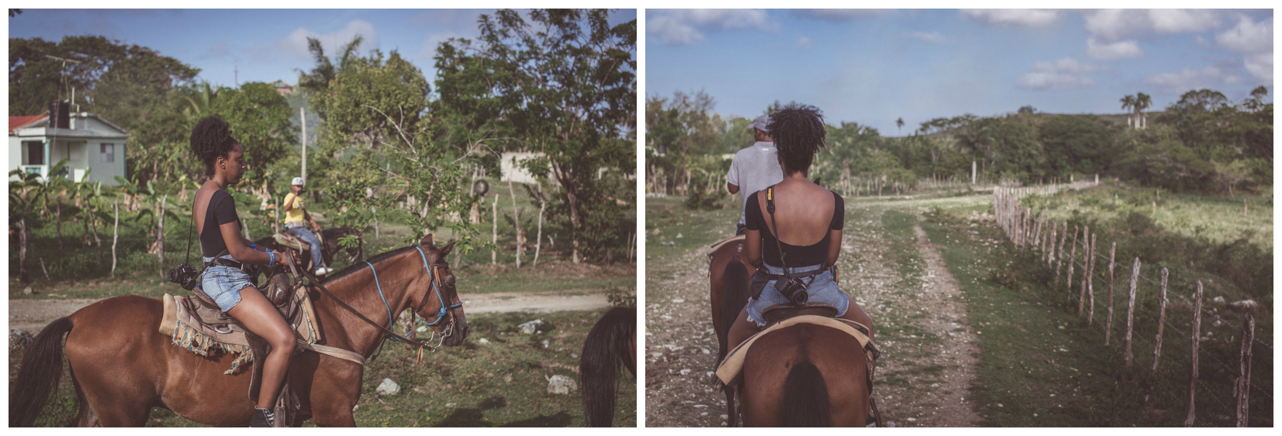 steph horse2.jpg