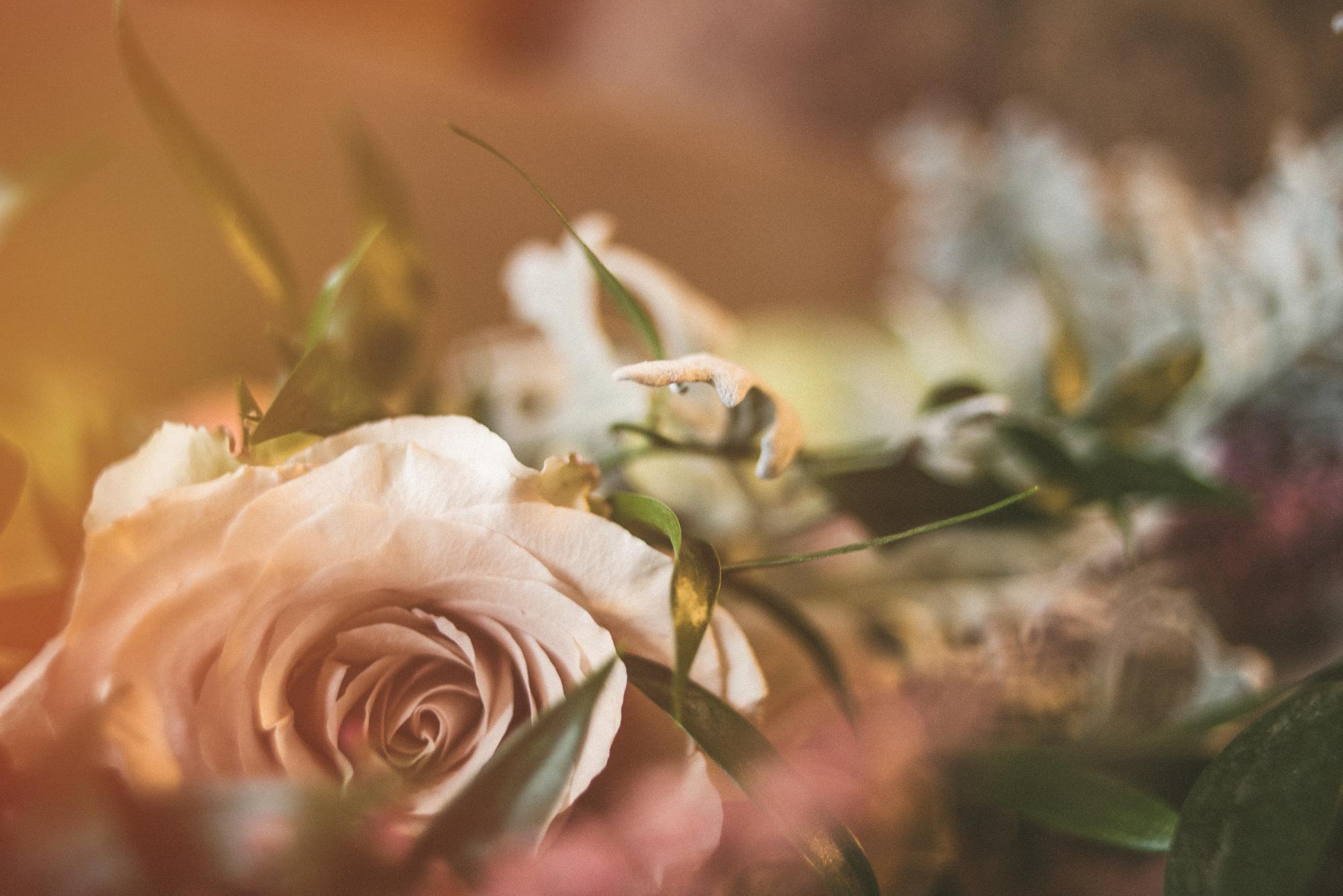 Peabody Wedding-8.jpg