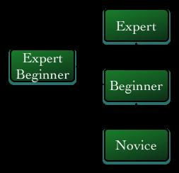 Modified Dreyfus model