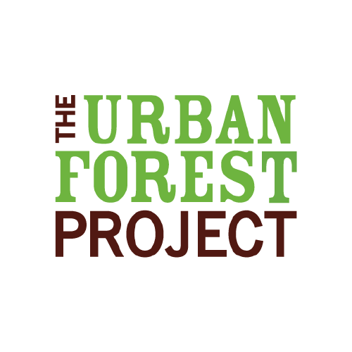 Urban Forest Project →