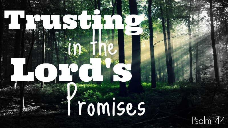 Trusting in the Lord's Promises 800x450.jpg