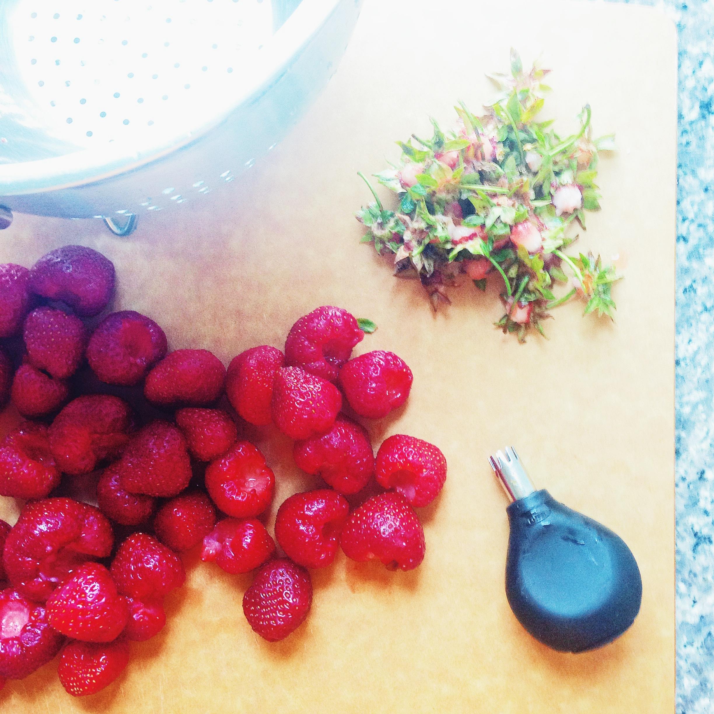 e - strawberry huller