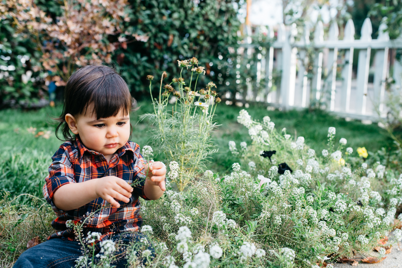Oakland-Family-Photographer--10.jpg