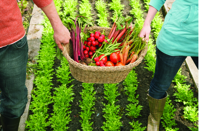 Moving the Food Movement