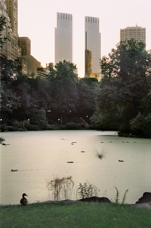 Central Park, New York (RES magazine)