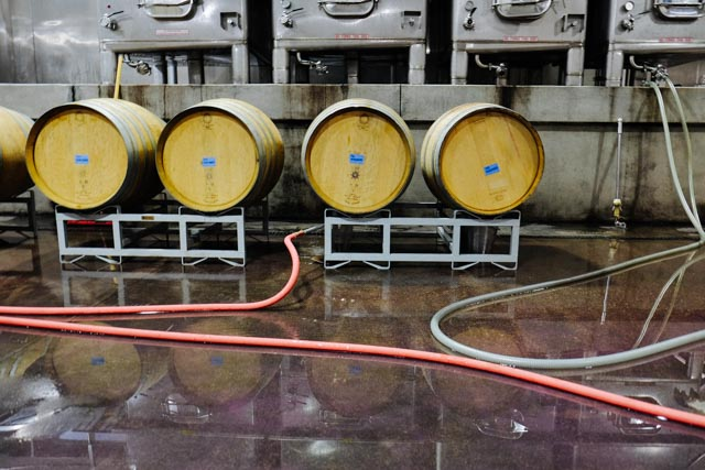 Clean barrels ready for 2014 wine.