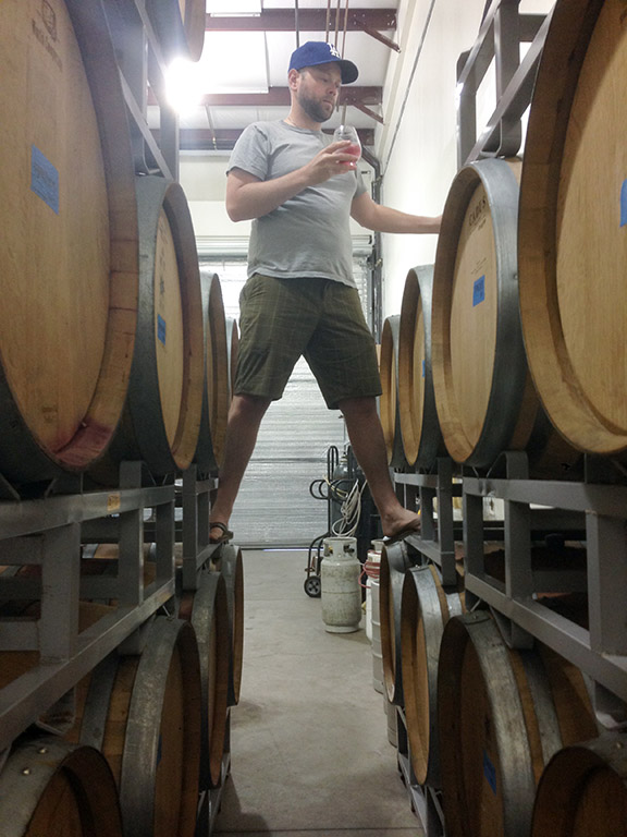 Sampling barrels in the winery, 2014.
