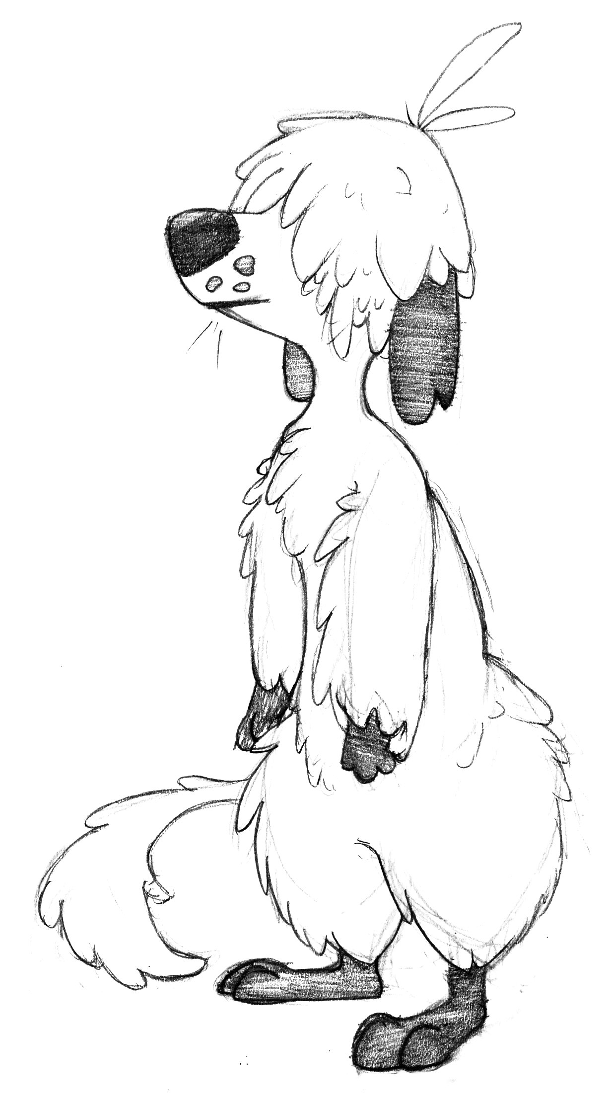 marlawhiteDogie.png