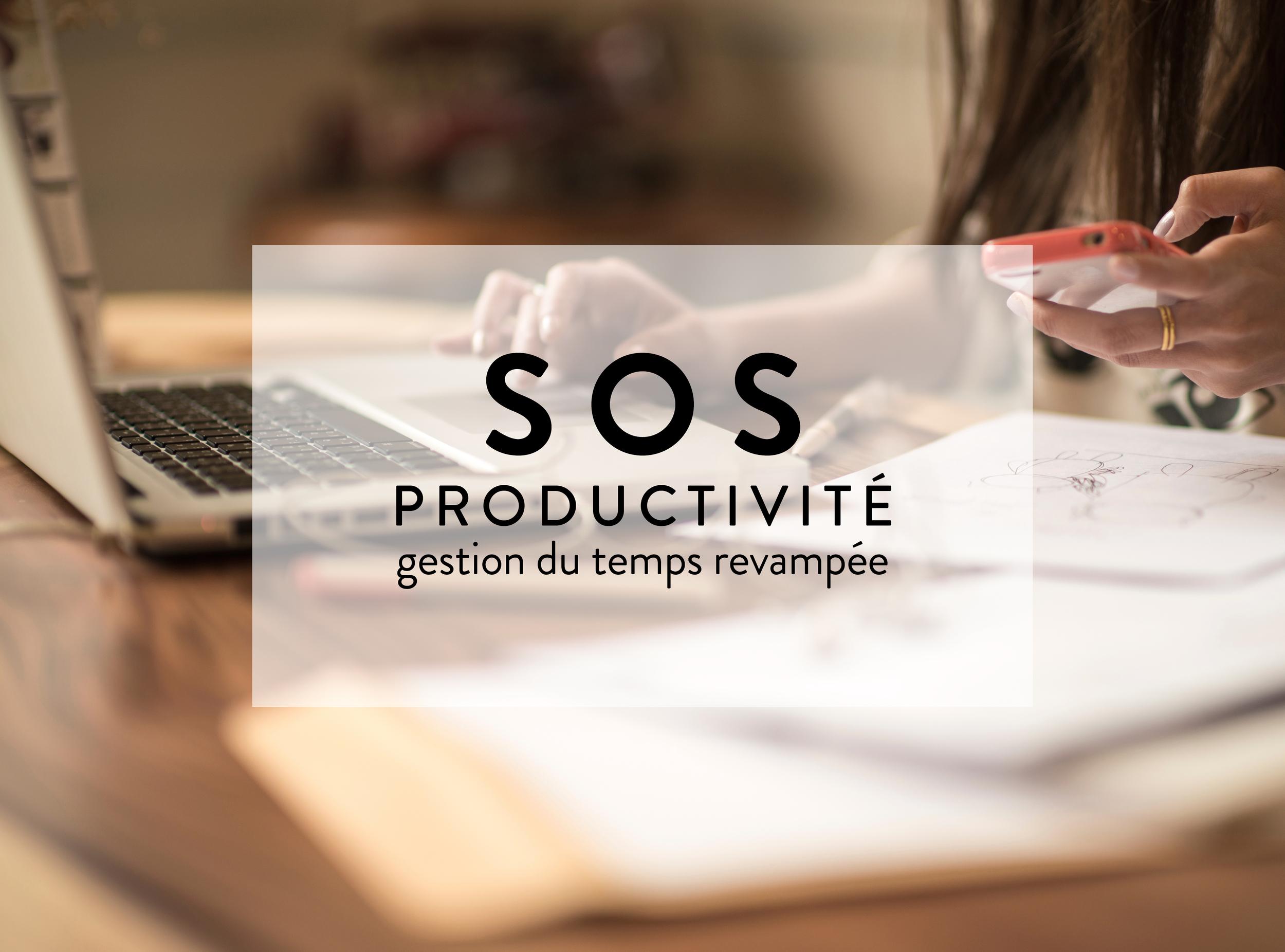 Cohesion_Coaching_Programme_Coaching_SOS_Productivite_jpg