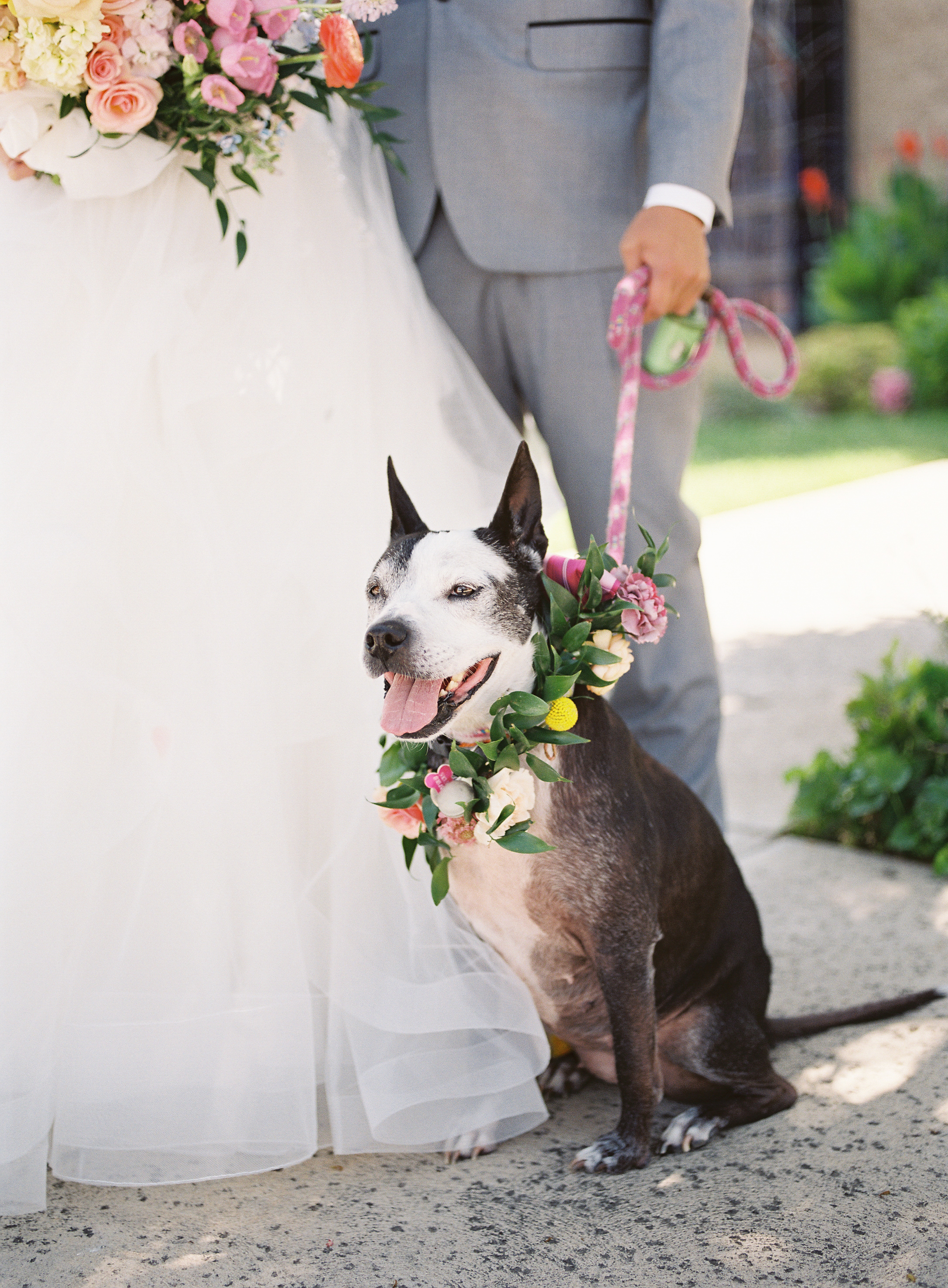 Portia-Lloyd-Wedding-Film-74.jpg