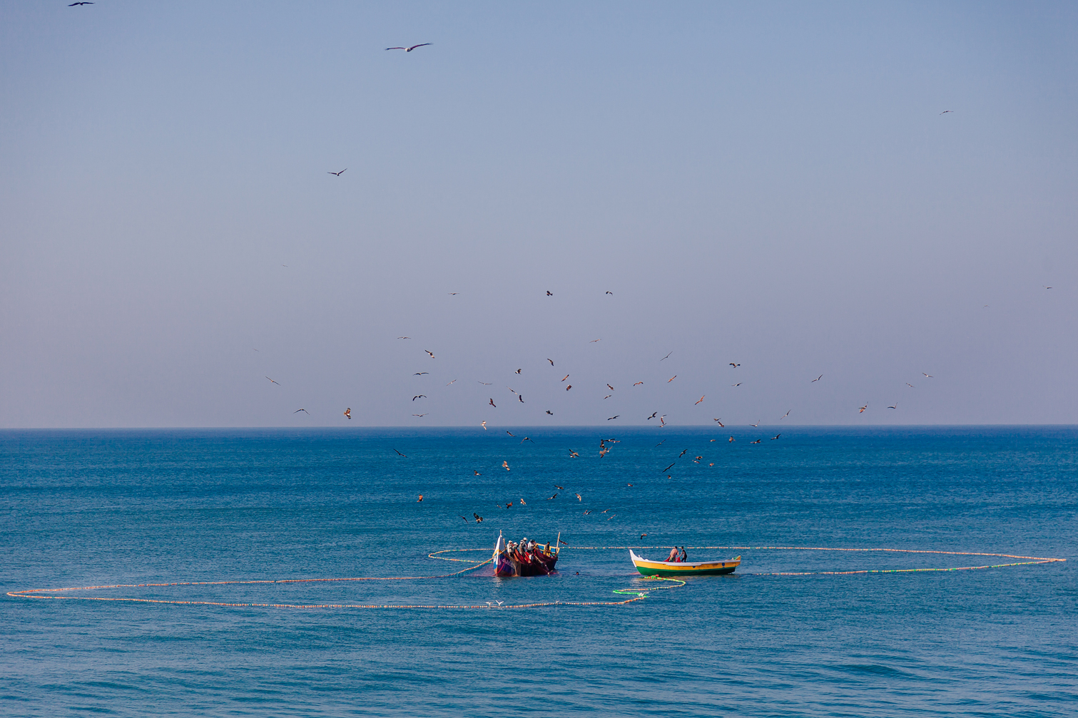 India_2014-3590.jpg