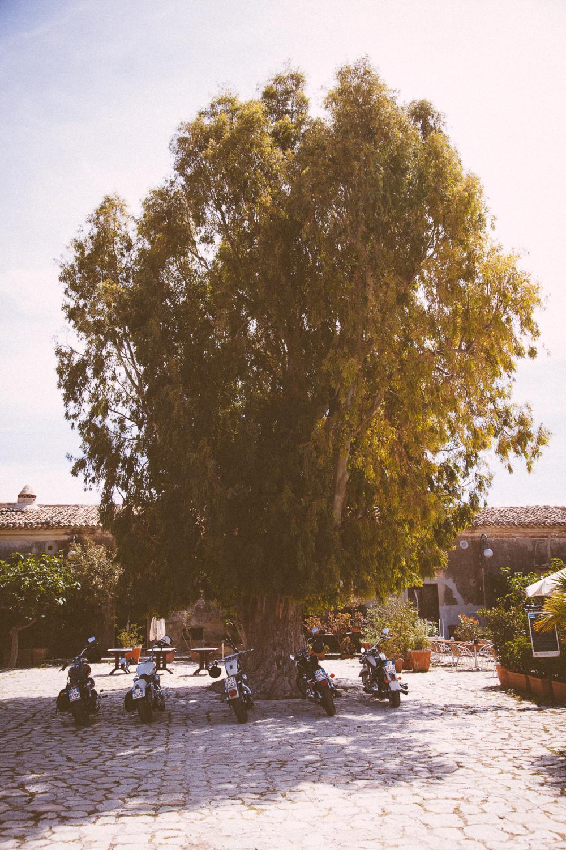 Sicily_2012-3151.jpg