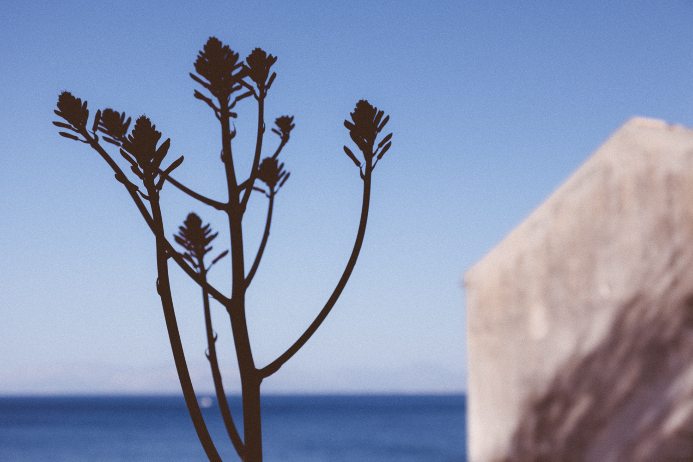 Sicily_2012-3191.jpg