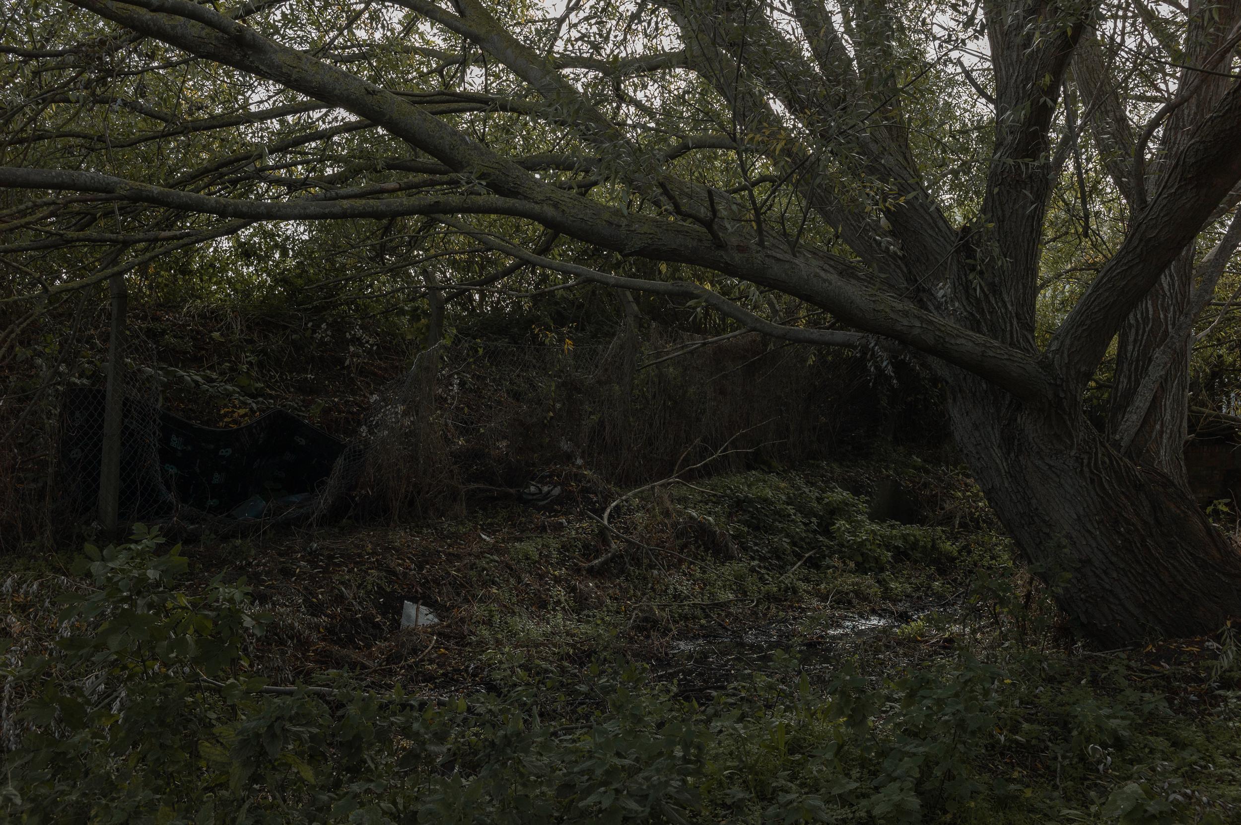 Newhaven-L1012193.jpg