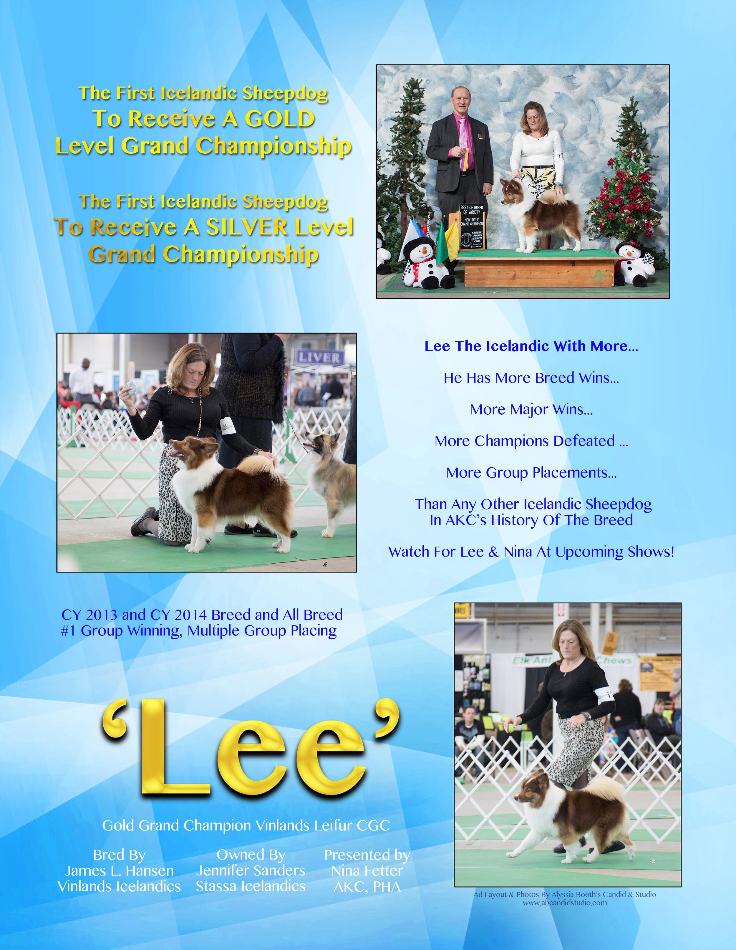 Lee Chronicle Ad 1.jpg