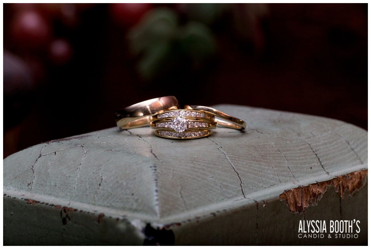 Rings | Marisa & Garrett 10.23.15 | Wedding at the Lawton Community Center | Kalamazoo Mi