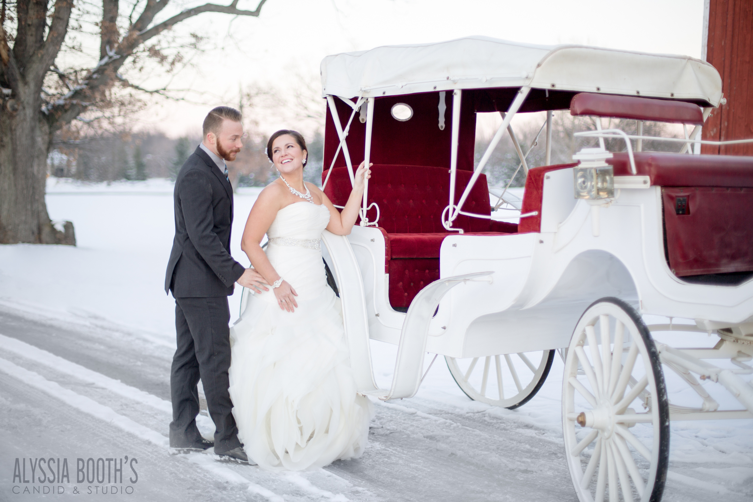 Romance Session | Bride & Groom | Alyssia Booth's Candid & Studio | Michigan Photographer