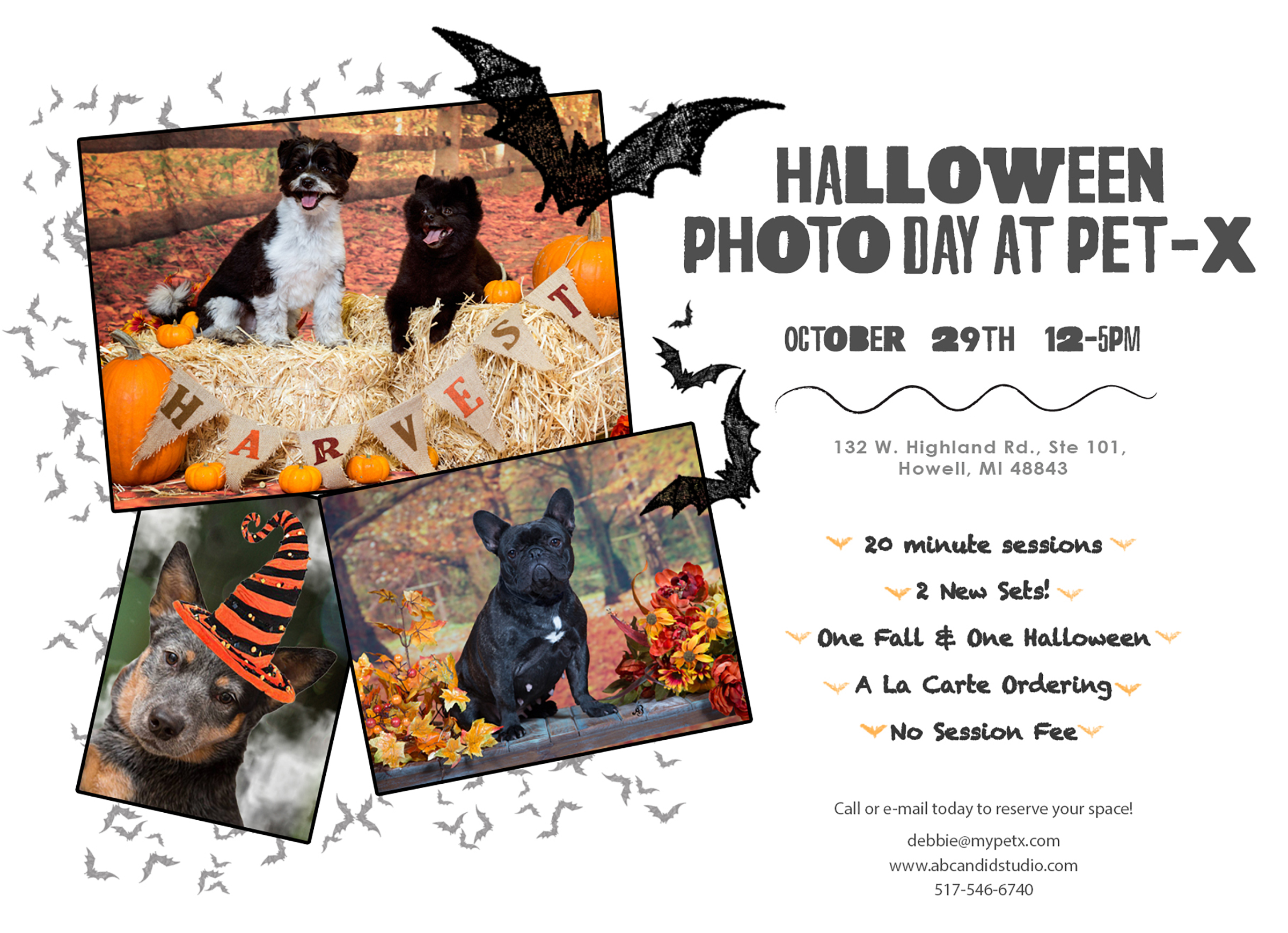 Pet Xtras Halloween Photo Event | Howell Michigan | Fall Photos | Alyssia Booth's Candid & Studio