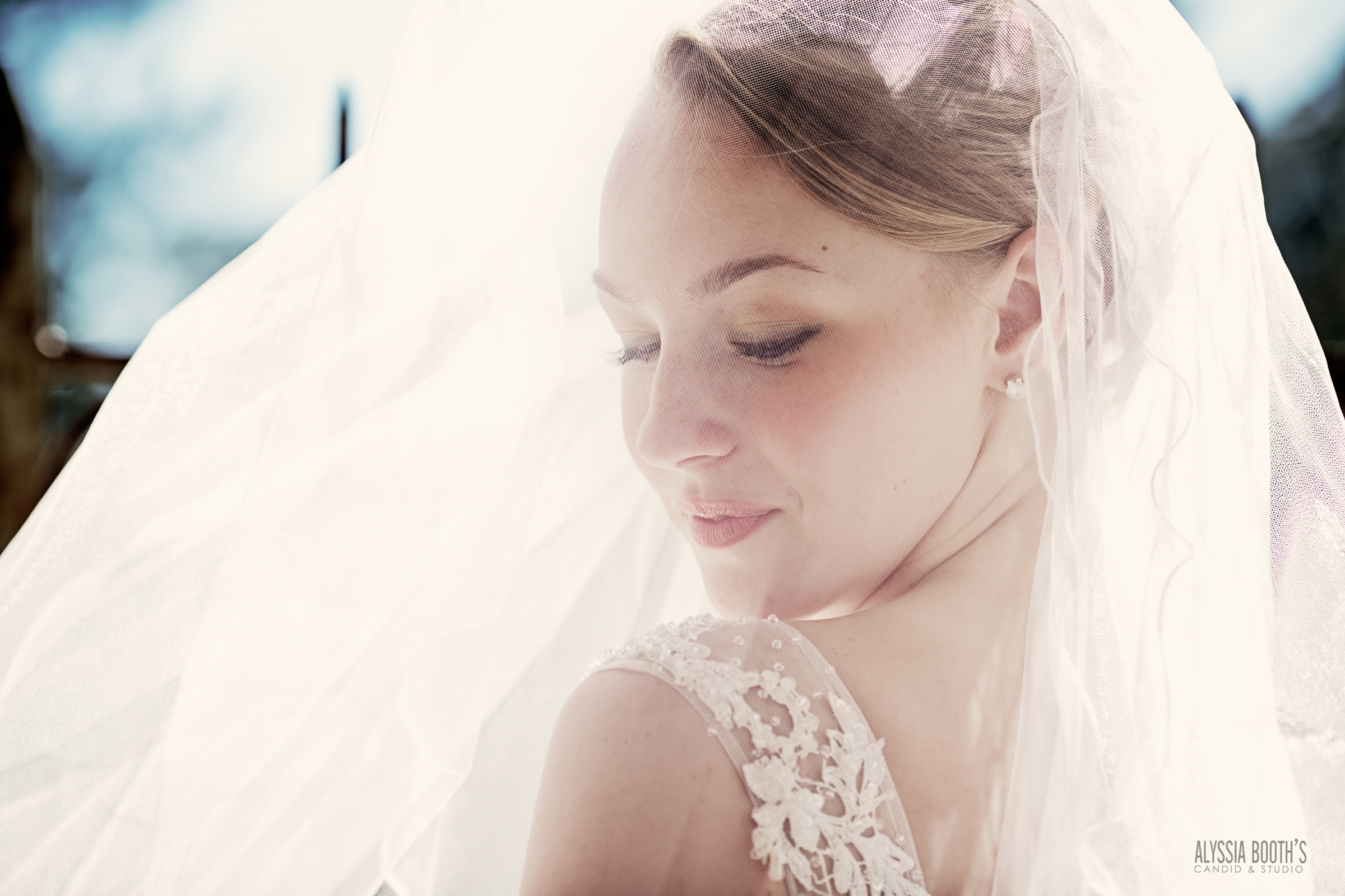Veiled | Bride Portrait | Alyssia Booth's Candid & Studio | Michigan Wedding Photography