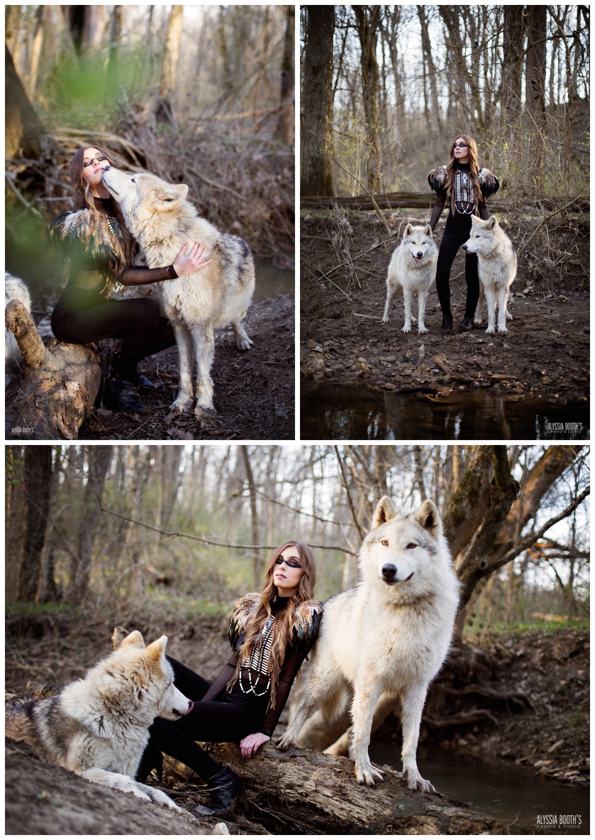 Fantasy Photoshoots | Wolf Photoshoot | Wolfdog | Ironwood wolves | Alyssia Booth's Candid & Studio | Fantasy Photoshoot | #wild #womenwhorunwithwolves #Whitewolf www.abcandidstudio.com
