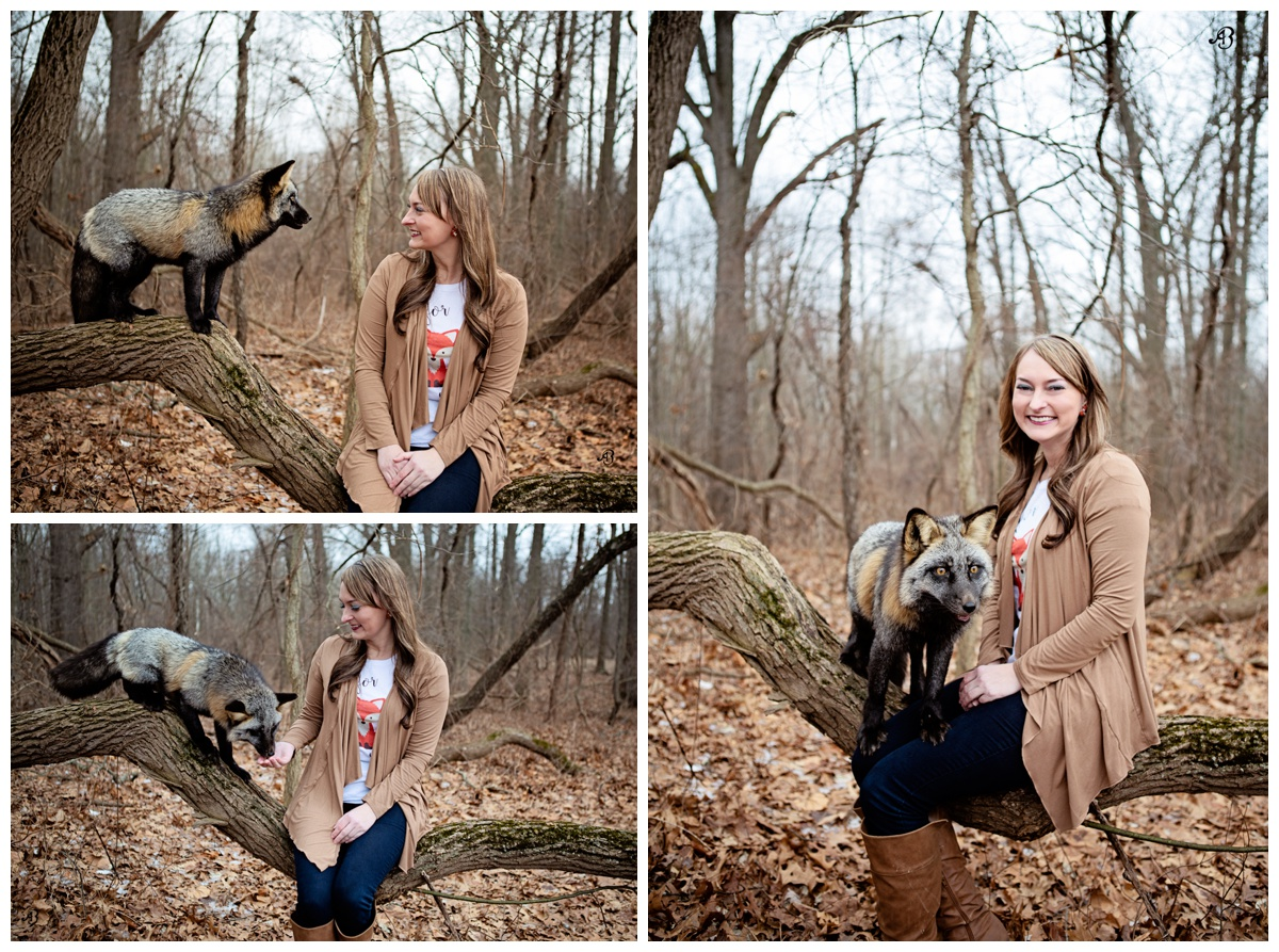 Meet & Greet with a Fox | Real Fox Photoshoot  | Magic in the woods | Red Fox | Alyssia Booth's Candid & Studio | Ironwood