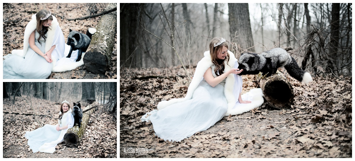 Winter Foxes | Photoshoot with Foxes | Animal Encounters | Alyssia Booth's Candid & Studio | Michigan Photographer | Fantasy Photoshoots