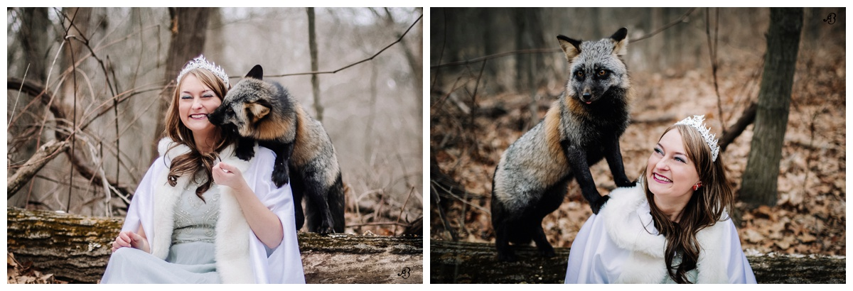 Fox Love | Winter Foxes | Photoshoot with Foxes | Animal Encounters | Alyssia Booth's Candid & Studio | Michigan Photographer | Fantasy Photoshoots