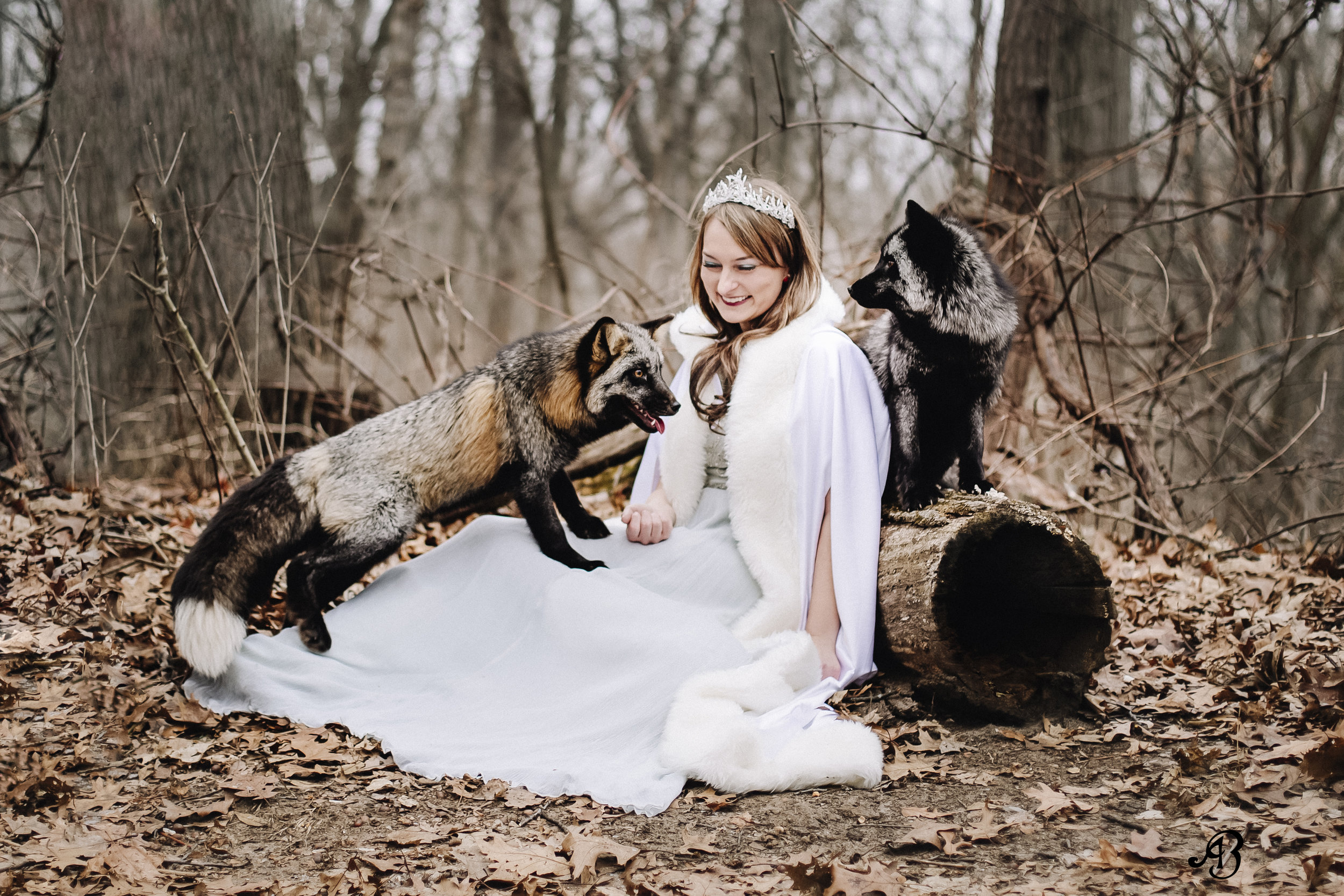 Princess and the Foxes | Photoshoot with Foxes | Animal Encounters | Alyssia Booth's Candid & Studio | Michigan Photographer | Fantasy Photoshoots | www.abcandidstudio.com