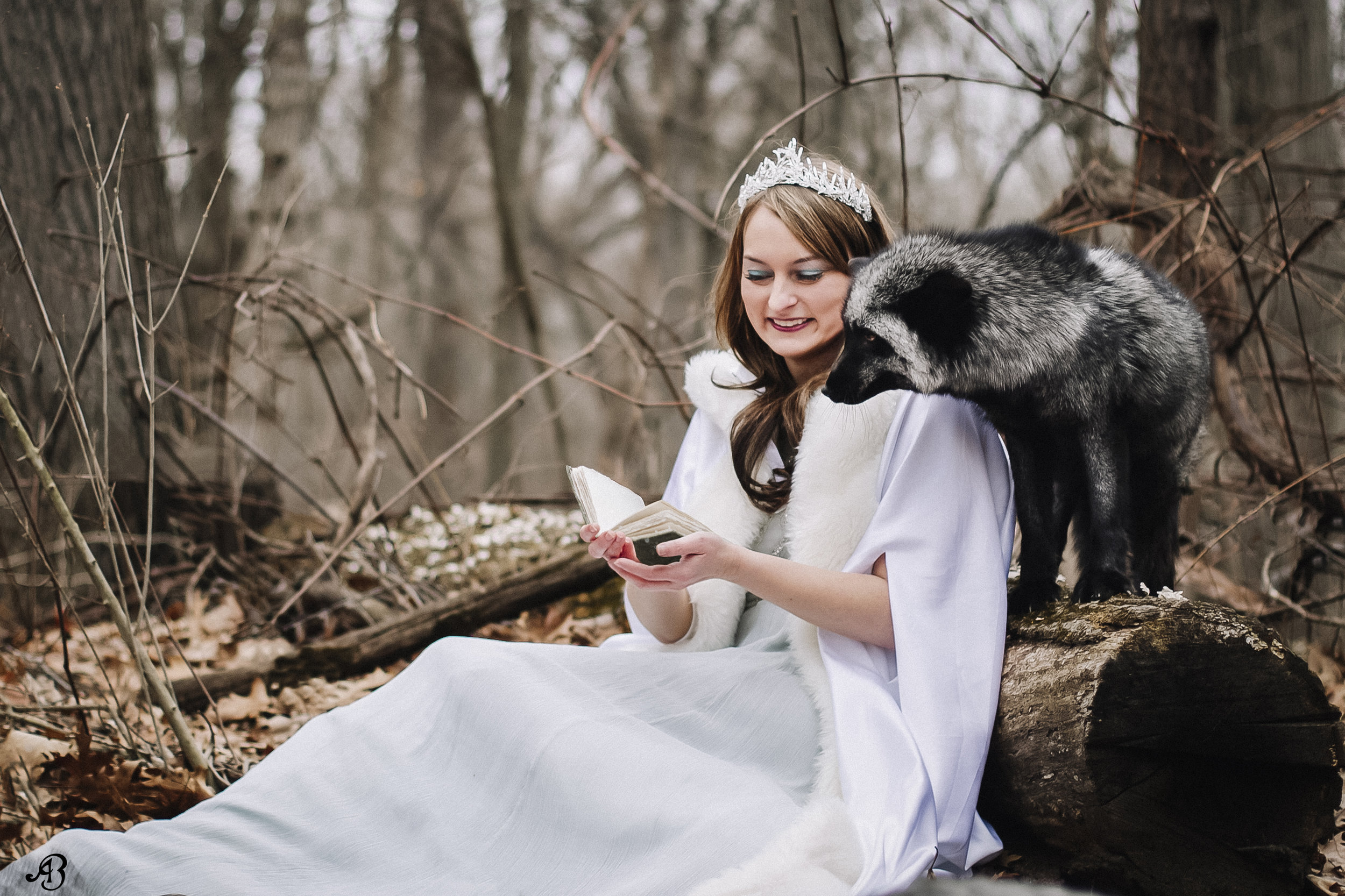 Reading with Foxes | Photoshoot with Foxes | Animal Encounters | Alyssia Booth's Candid & Studio | Michigan Photographer | Fantasy Photoshoots | www.abcandidstudio.com