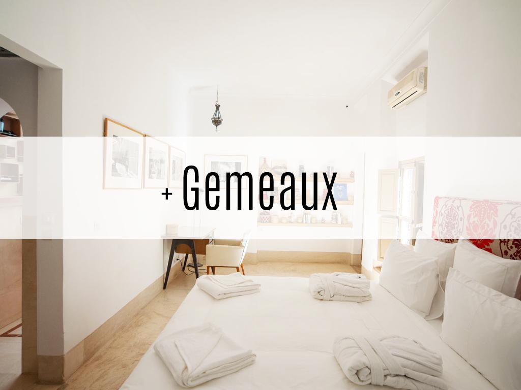 Gemeaux_text_web.png