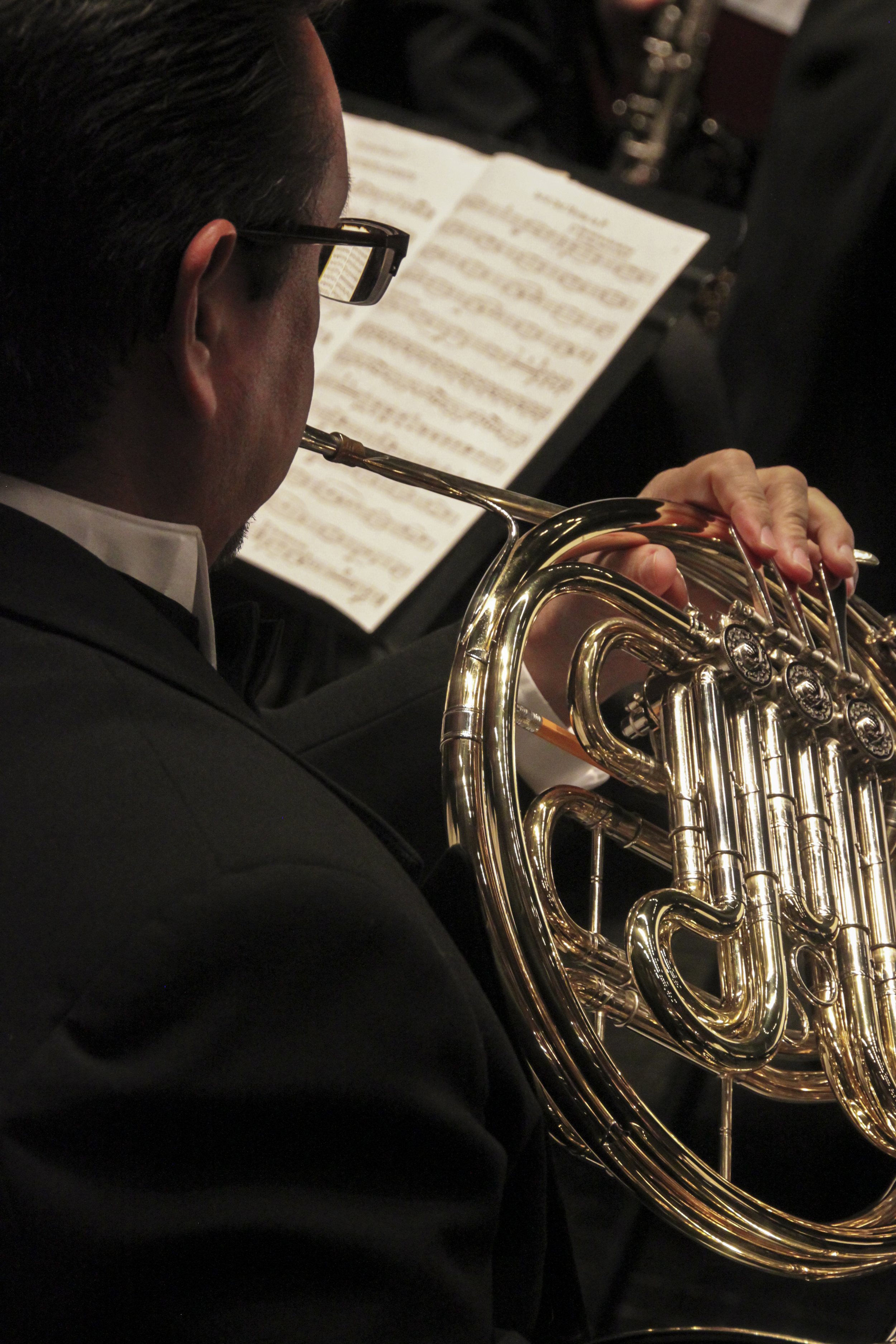 SAWS Horn 2.jpg