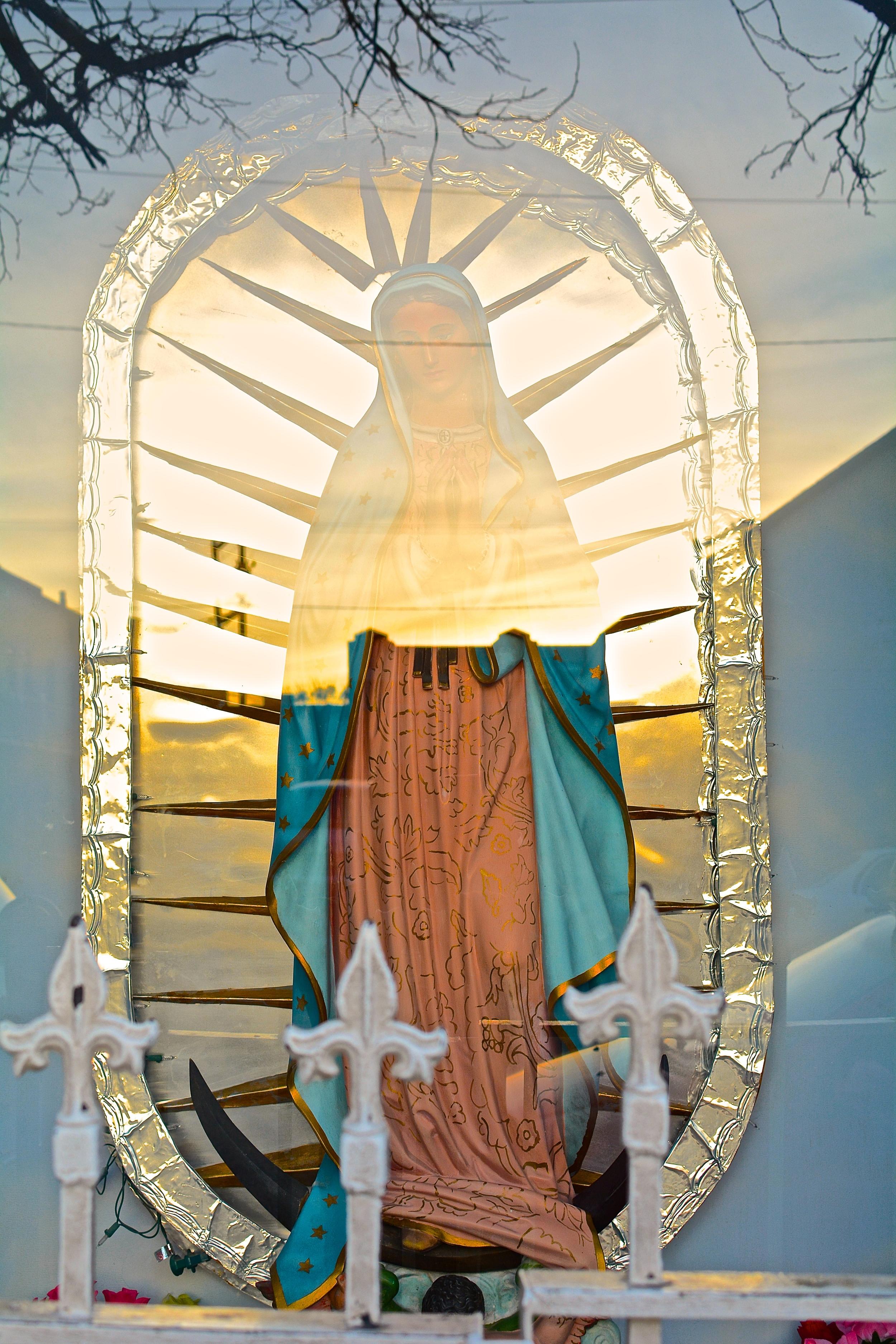 Virgen of St. Patrick's Cathedral by Carlos Hernandez