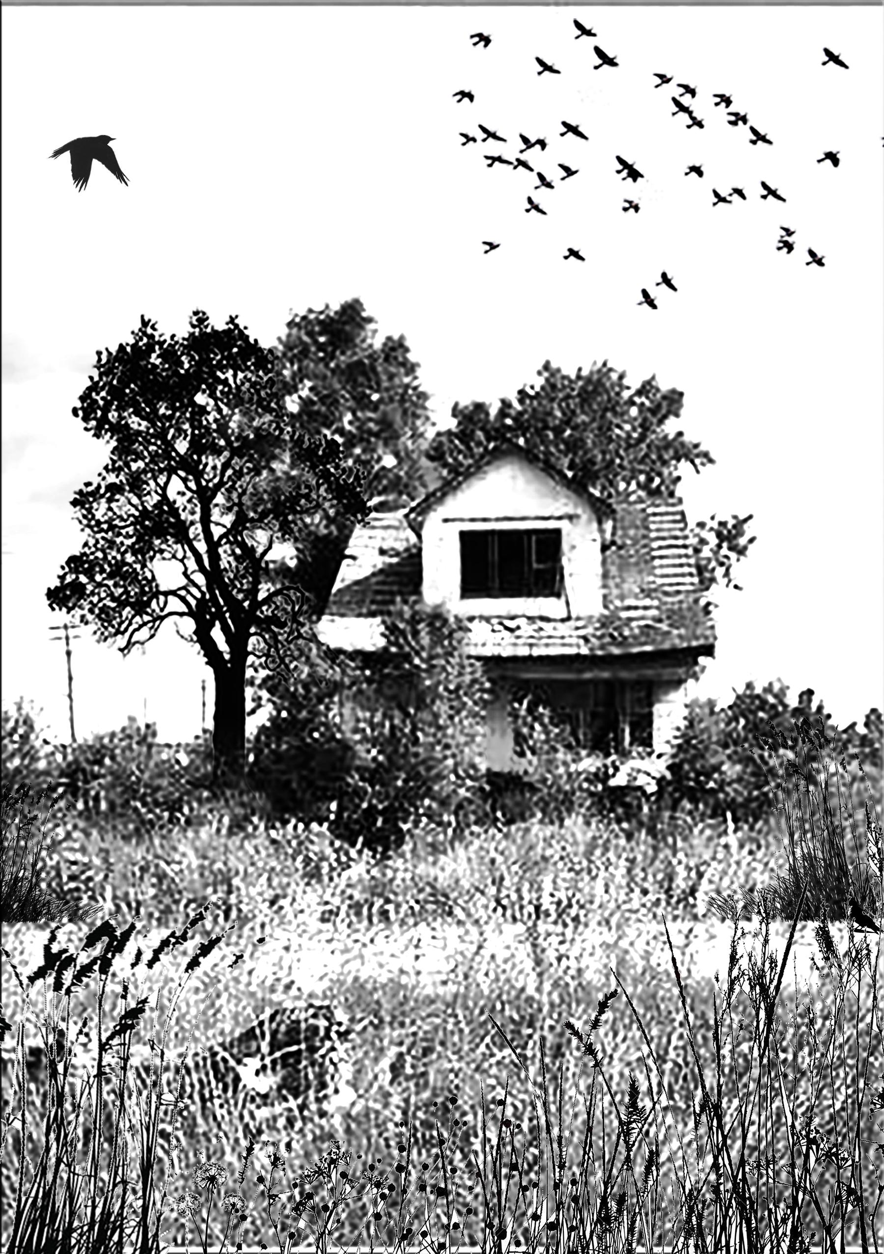 DetroitHouse-3-4-3.jpg