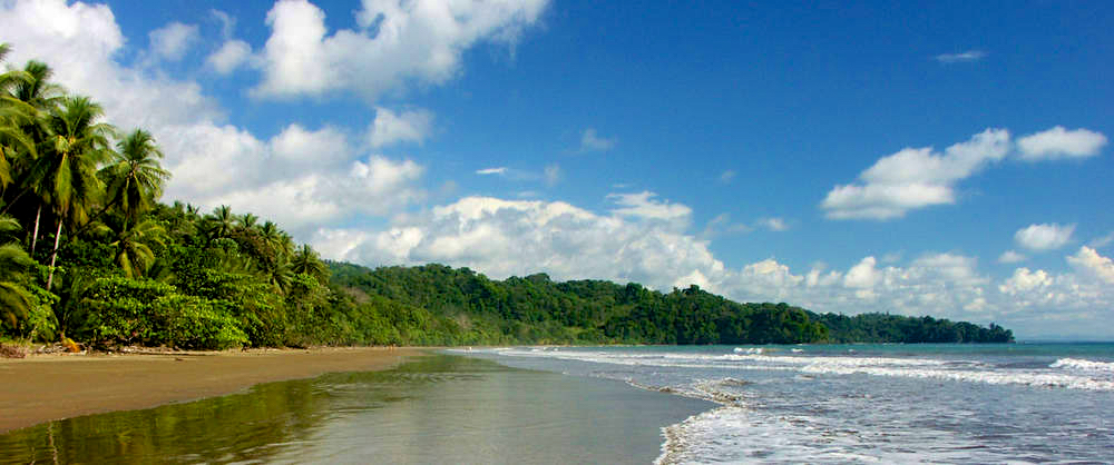 Bahia Ballena (1).jpg