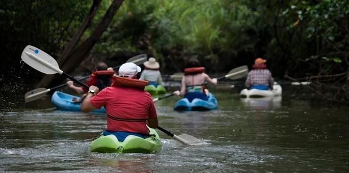 14018-damas-island-kayaking.jpg