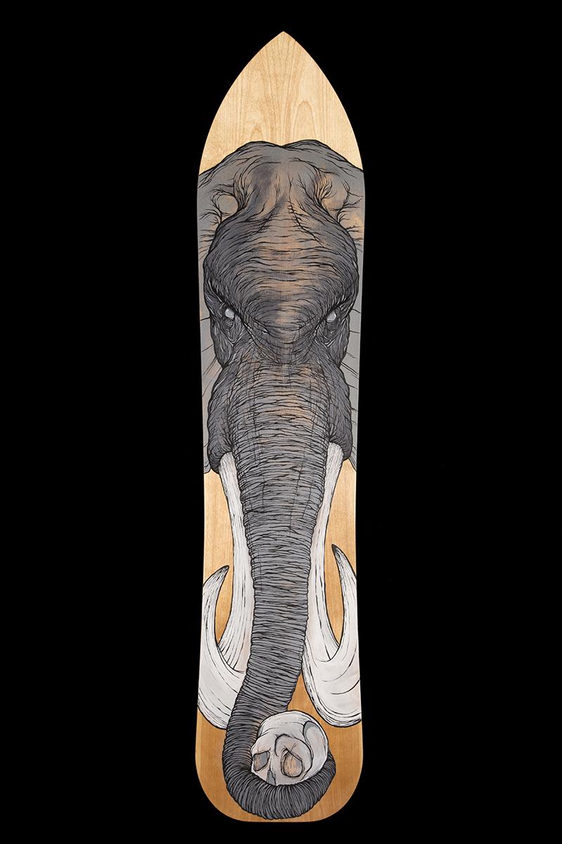 Elephant Board.jpg