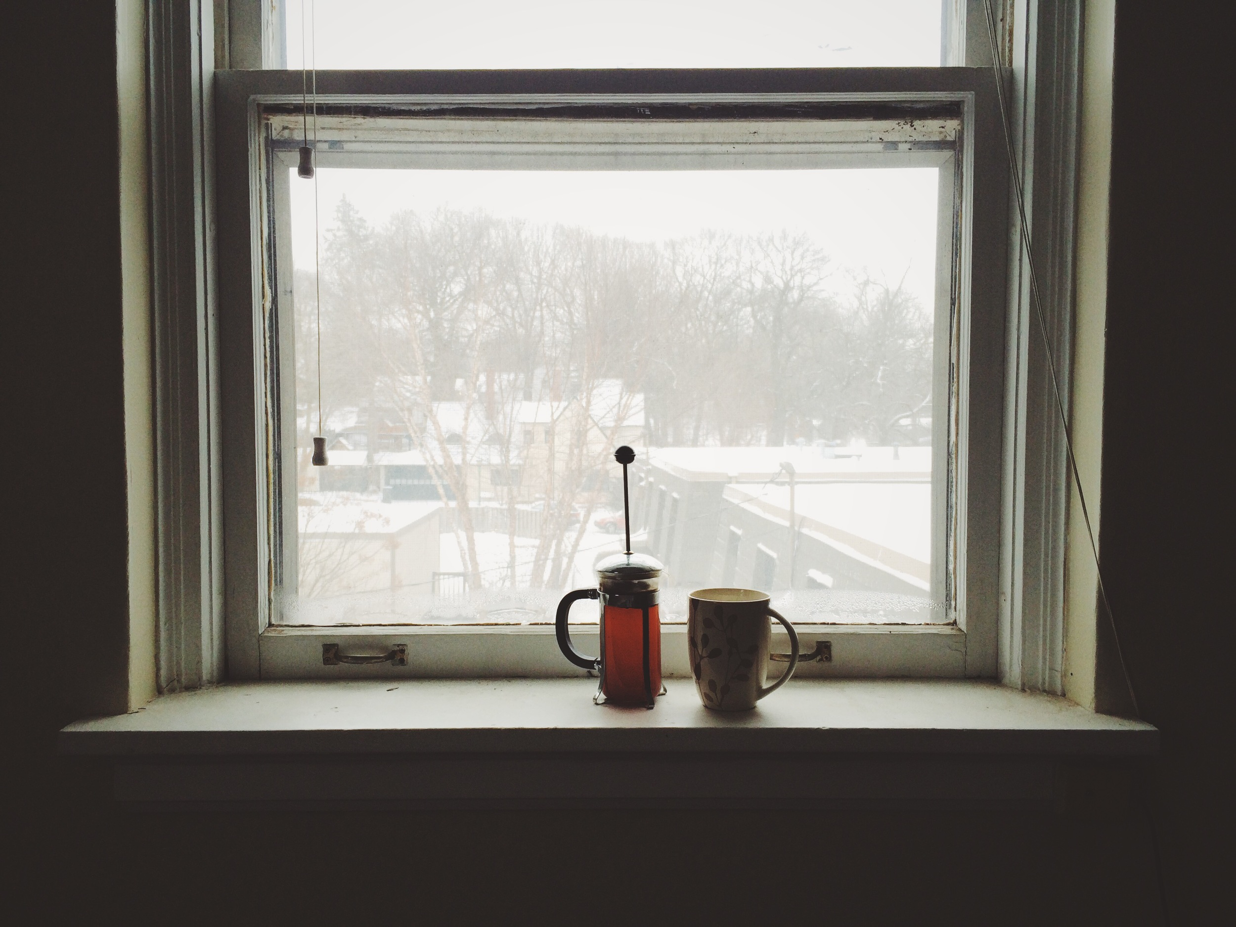Slow snow days. Kind of loving thiscurling up business.